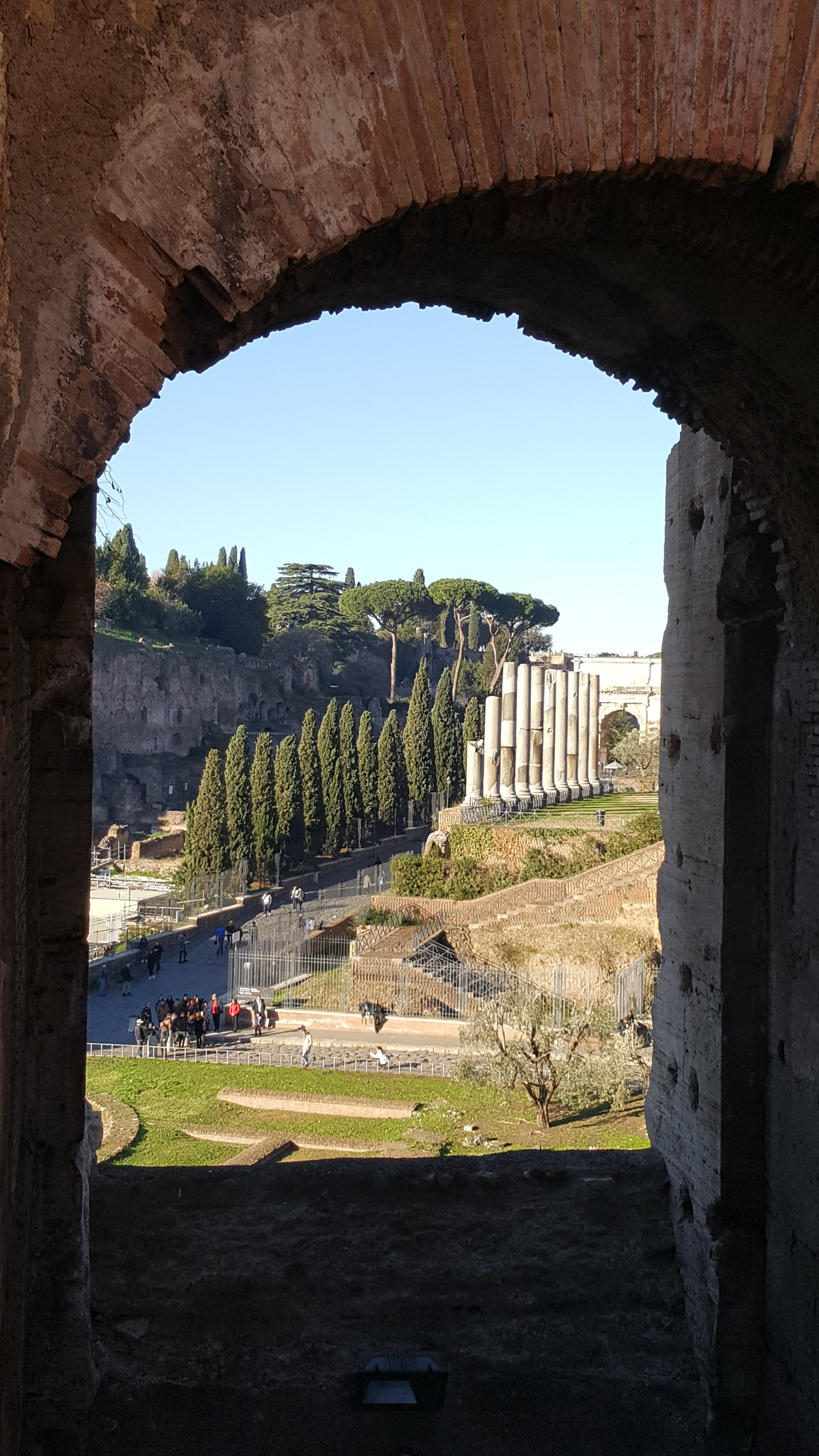 View from the Colosseo